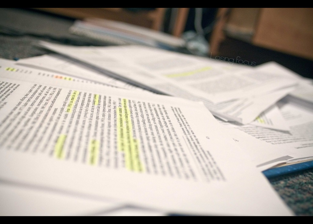 Differences between Colonial Regions Essay